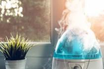 Способы увлажнения воздуха в квартире